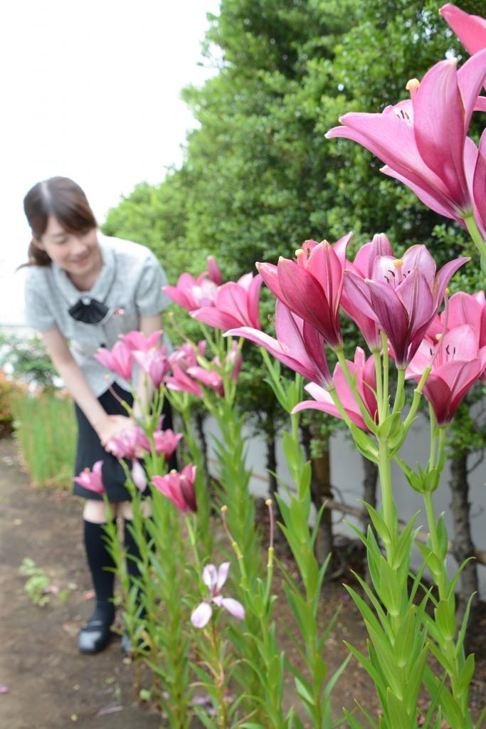 東京むさし・0603・A友好の花DSC_1432