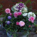 【イベント】4/17(月)春の草花で作る 華やかな寄せ植え講座/国分寺支店