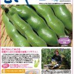 情報誌「むさし」5・6月号を掲載しました。