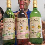 今年も発売!伝統のキウイフルーツワイン