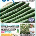 情報誌「むさし」7・8月号を掲載しました。