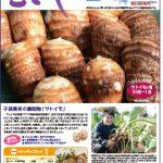 情報誌「むさし」11・12月号を掲載しました。