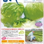 情報誌「むさし」最新号を掲載!