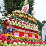 2015年度 農業祭の様子を掲載しました