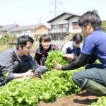 新入職員が土に触れ農業を学ぶ!