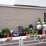 地場産の植木で植栽工事 新店舗の鈴木町支店
