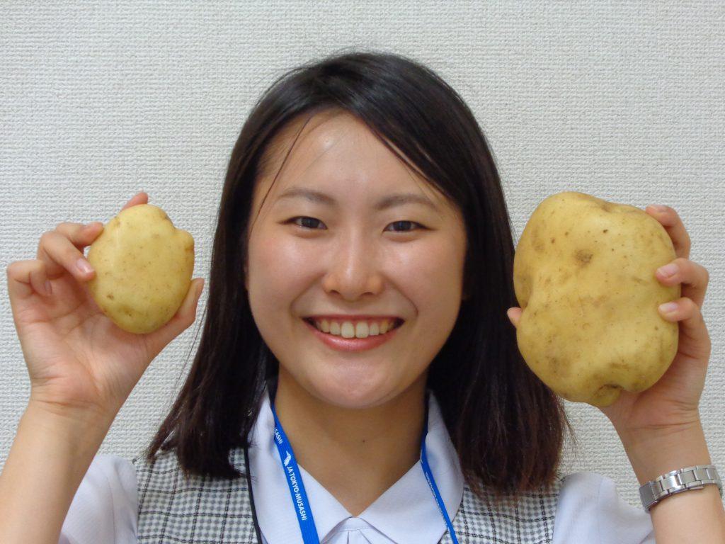 東京むさし・0725・大きなジャガイモ収穫
