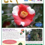 情報誌「むさし」1・2月号を掲載しました。