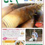 情報誌「むさし」3・4月号を掲載しました。