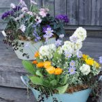 【参加者募集】5/2(水) 花いっぱいの寄せ植え講座/国分寺支店