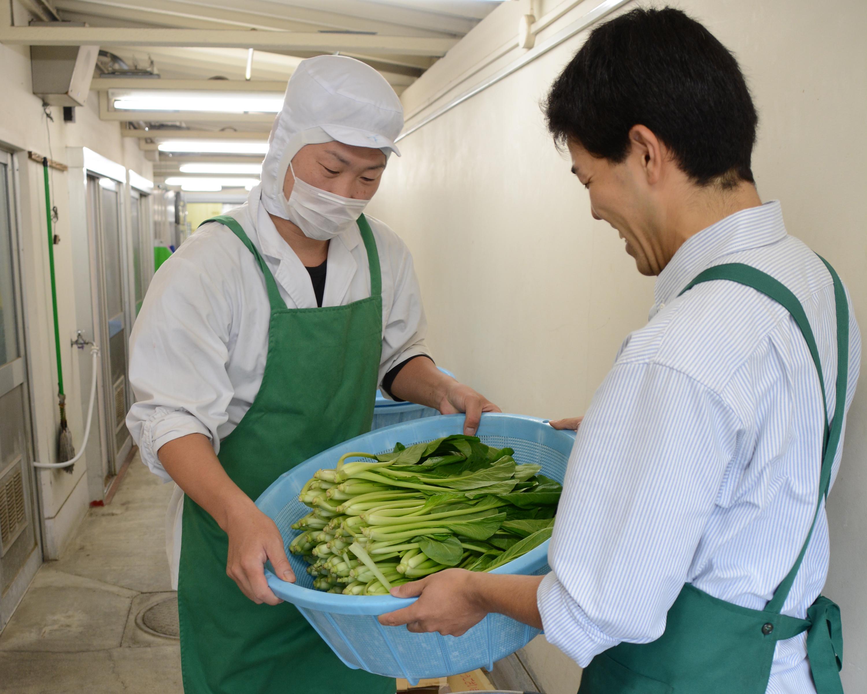学校給食への地場産食材の供給拡大