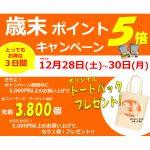 【歳末ポイント5倍キャンペーン】12月28日(土)~30日(月)実施します!