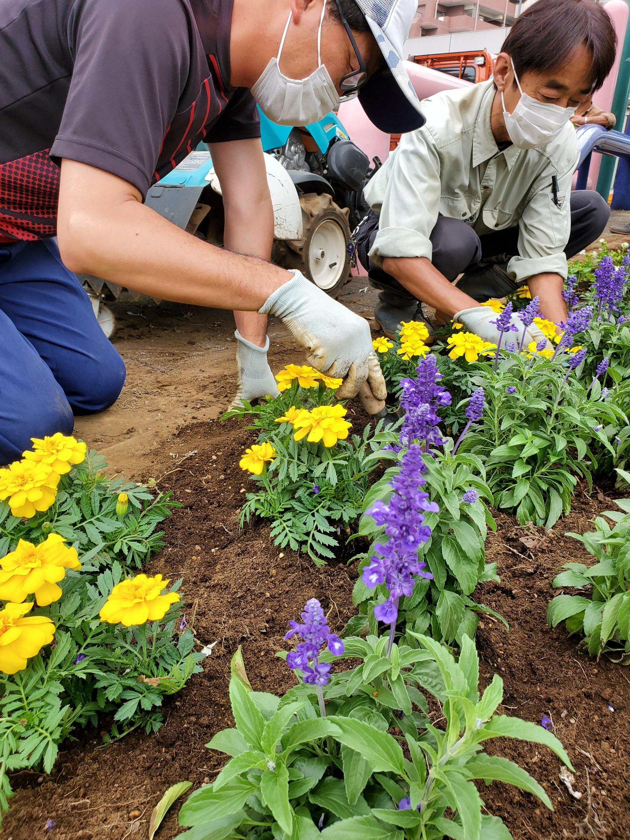 小平市内の緑化に貢献 花壇を整備