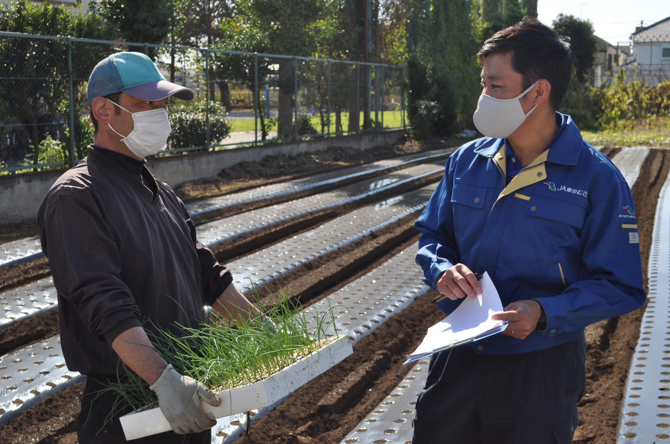 都市農地の貸借で農地活用 ニーズ調査でマッチング成立